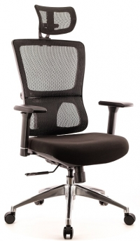 Эргономичное компьютерное кресло EVEREST