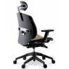 Ортопедическое офисное кресло DUOREST Alpha α80H